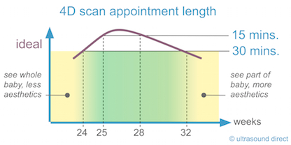 4d scan appointment length