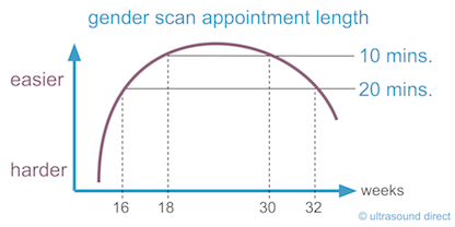 gender scan appointment length